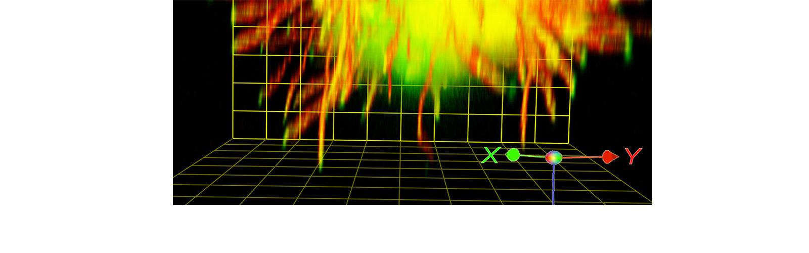 3d axon guidance